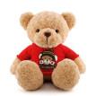 泰迪熊布娃娃毛绒玩具小娃娃熊熊公仔大号抱抱熊男生玩偶宝宝陪睡