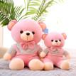 粉色少女心小熊熊公仔软体抱抱熊泰迪熊可爱超萌女孩布偶娃娃玩偶
